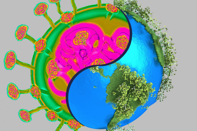 Pět způsobů, jak koronavirus možná lidstvu pomůže přežít ekologickou krizi