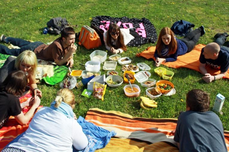 Veganský piknik  (Pardubice)