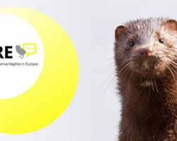Conference on Animal Rights in Europe (CARE) 2020