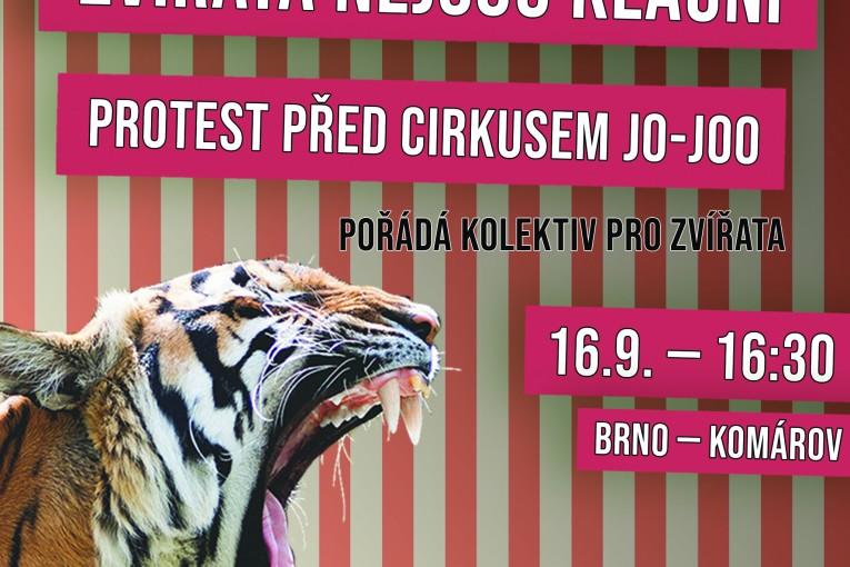 Protest u cirkusu Jo-Joo (Brno)