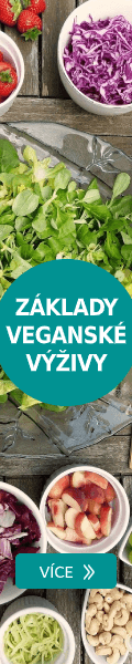 Základy veganské výživy