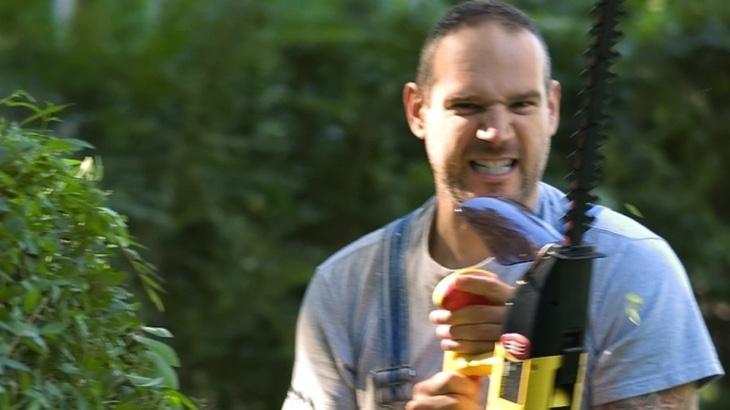 Zeptali jsme se biologa, jestli rostliny mohou cítit bolest