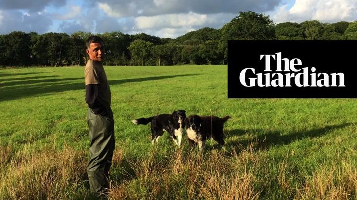 Z farmáře veganem. Co stojí za takovým obratem? (The Guardian)