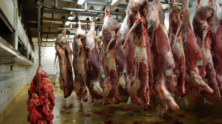 Pracoval jsem v jatkách, dnes maso nejím