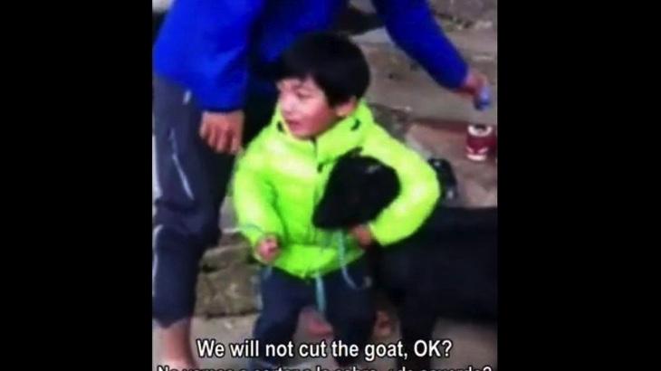 Tříletý chlapec bojuje za záchranu svého kamaráda (video)