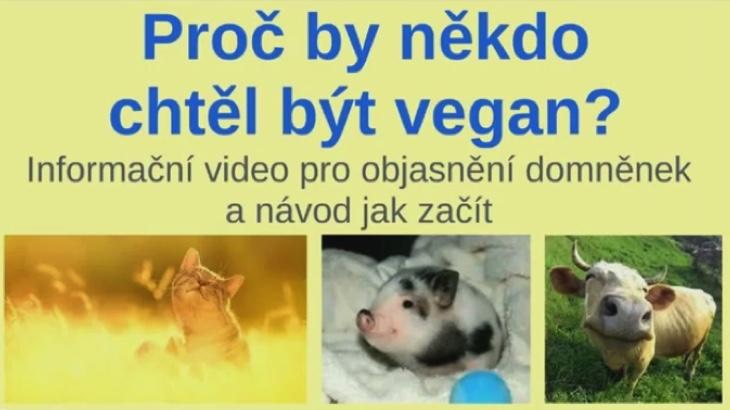Proč by někdo chtěl být vegan?