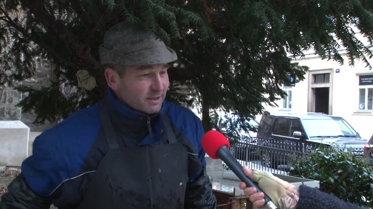 Dovedete si představit Vánoce bez kapra? (video)
