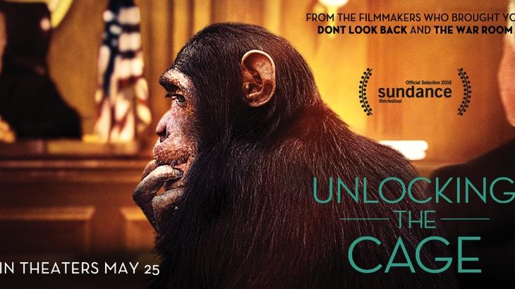 Nový film o boji za práva zvířat (video)