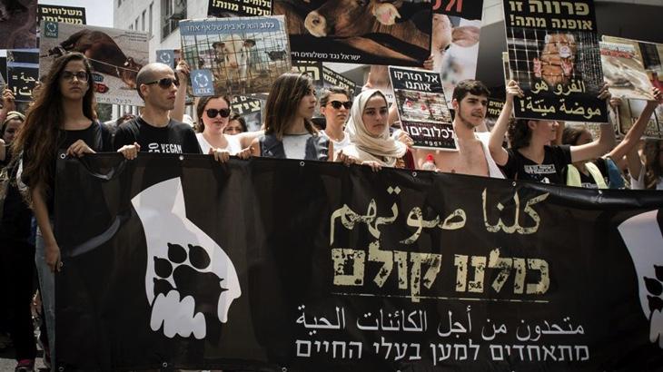 Společná protestní akce muslimů a židů za práva zvířat v Haifě
