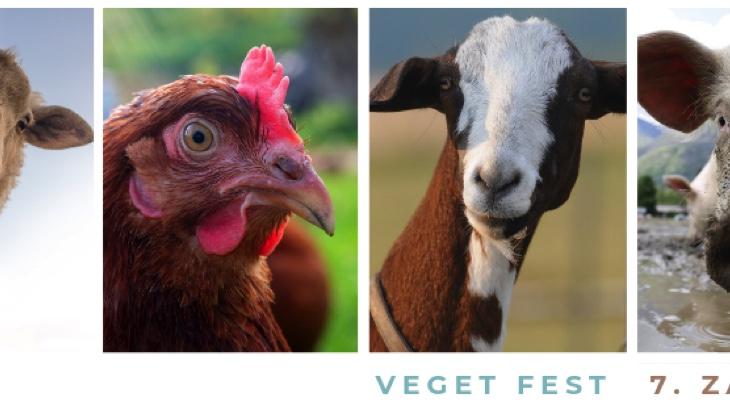 6. Veget Fest Strakonice